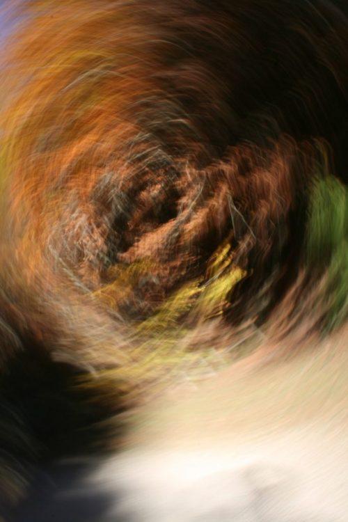 Paolo Emilio Benvenuti, Immersion in autumn colors, Immersione nei colori autunnali